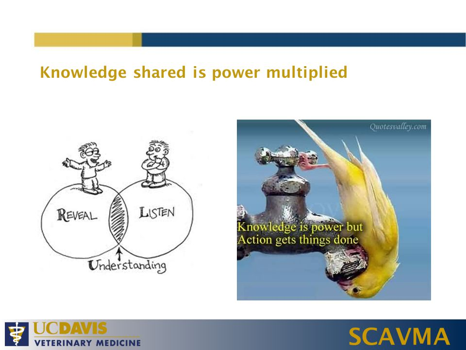 SCAVMA Knowledge shared is power multiplied