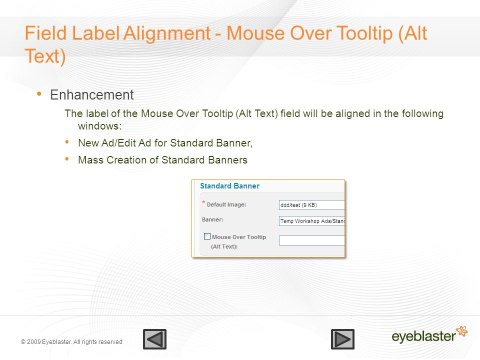 © 2009 Eyeblaster. All rights reserved Field Label Alignment - Mouse Over Tooltip (Alt Text) Enhancement The label of the Mouse Over Tooltip (Alt Text