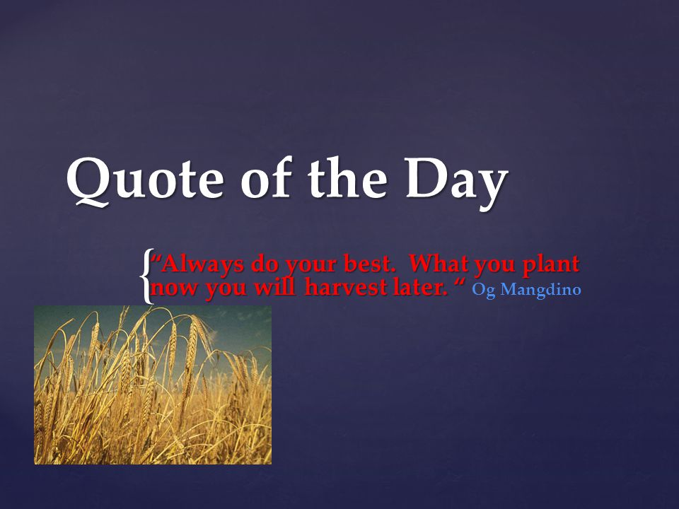 { Quote of the Day Always do your best. What you plant now you will harvest later.