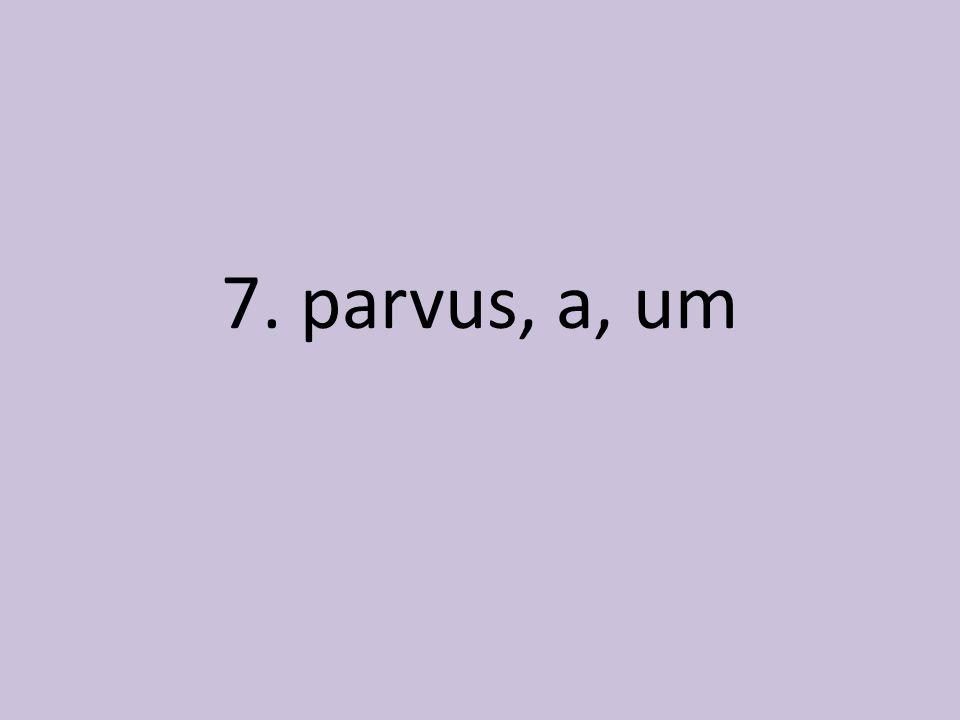 7. parvus, a, um