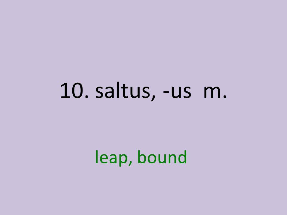 leap, bound