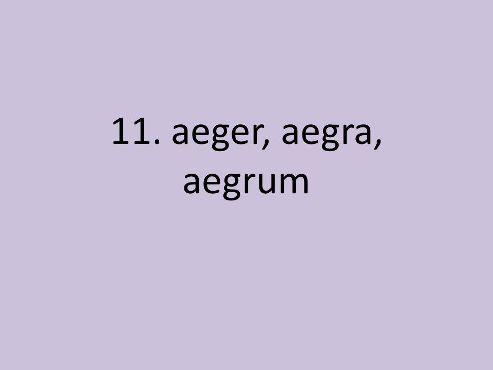11. aeger, aegra, aegrum