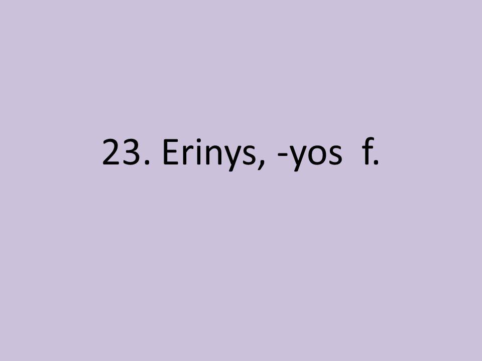 23. Erinys, -yos f.