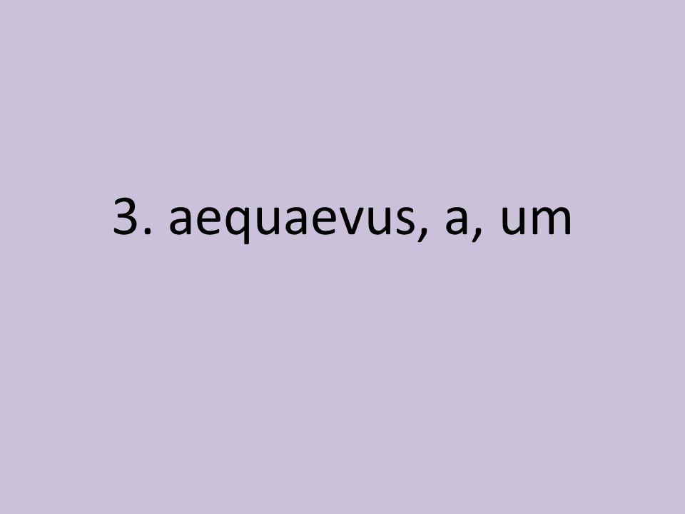 3. aequaevus, a, um