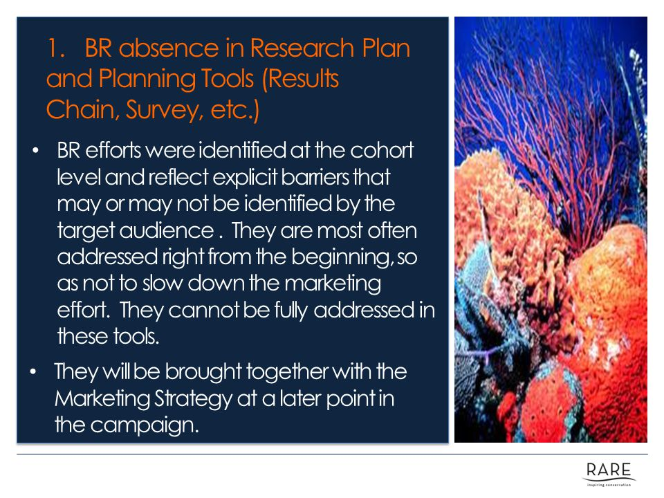1. BR absence in Research Plan and Planning Tools (Results Chain, Survey, etc.) BR efforts were identified at the cohort level and reflect explicit ba