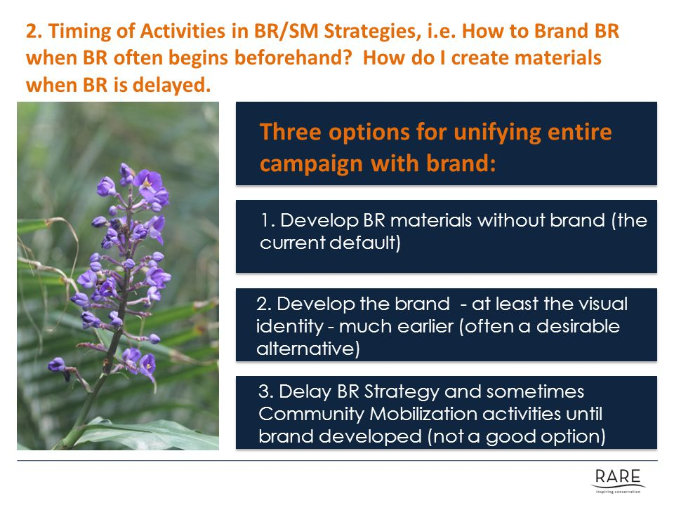 2. Timing of Activities in BR/SM Strategies, i.e.