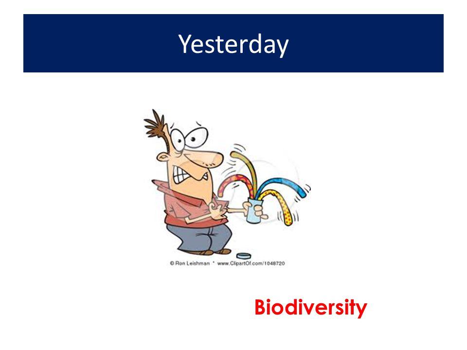 Yesterday Biodiversity