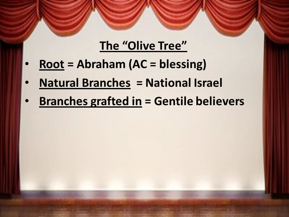 The Olive Tree Root = Abraham (AC = blessing) Natural Branches = National Israel Branches grafted in = Gentile believers