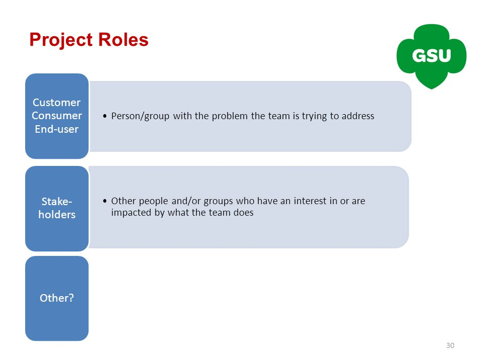 Project Roles 30