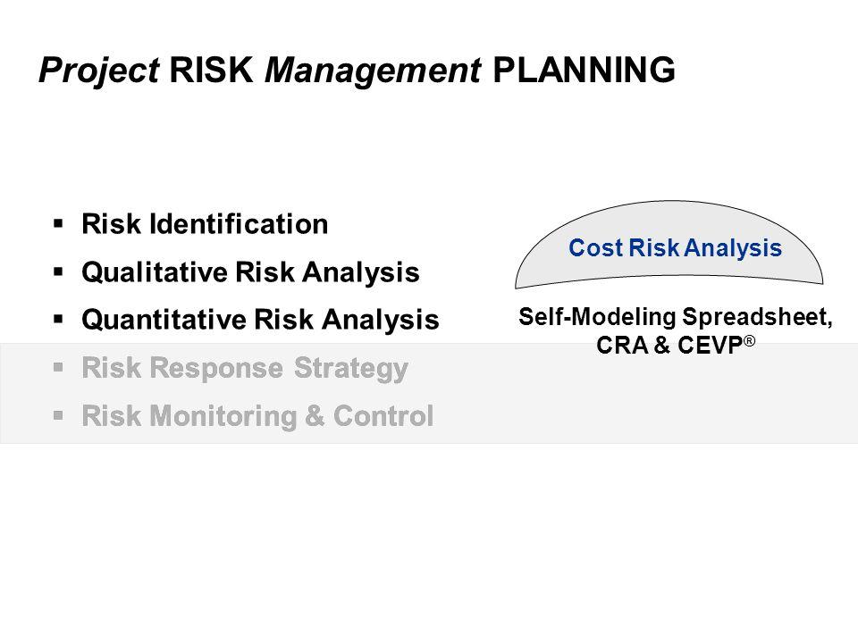 Project RISK Management PLANNING  Risk Identification  Qualitative Risk Analysis  Quantitative Risk Analysis  Risk Response Strategy  Risk Monito