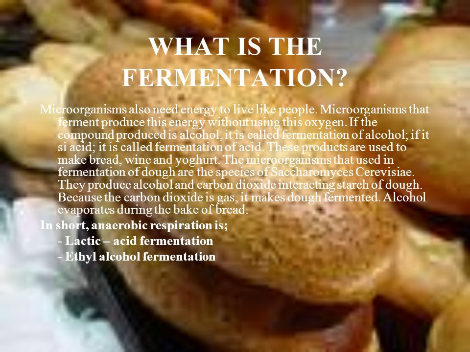 WHAT IS THE FERMENTATION. Microorganisms also need energy to live like people.