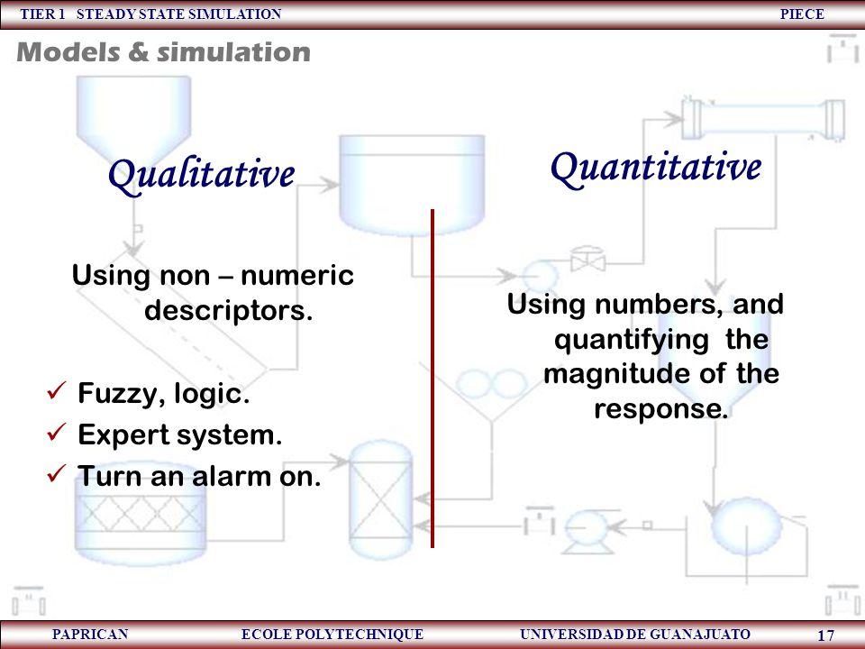 TIER 1 STEADY STATE SIMULATION PIECE PAPRICAN ECOLE POLYTECHNIQUE UNIVERSIDAD DE GUANAJUATO 17 Quantitative Using non – numeric descriptors. Fuzzy, lo