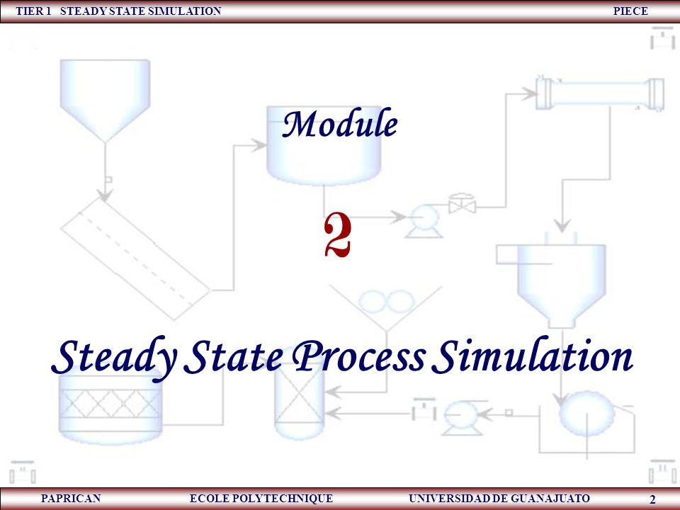 TIER 1 STEADY STATE SIMULATION PIECE PAPRICAN ECOLE POLYTECHNIQUE UNIVERSIDAD DE GUANAJUATO 2 Module Steady State Process Simulation 2