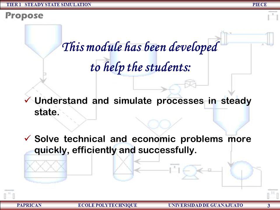 TIER 1 STEADY STATE SIMULATION PIECE PAPRICAN ECOLE POLYTECHNIQUE UNIVERSIDAD DE GUANAJUATO 74 Aspects of Process Design  Process design.