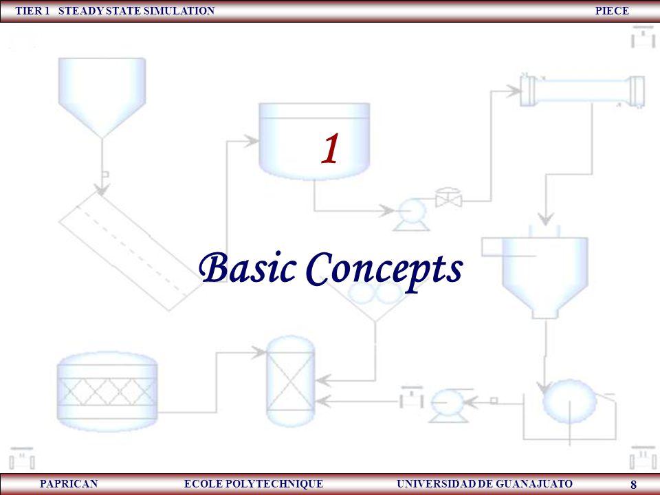 TIER 1 STEADY STATE SIMULATION PIECE PAPRICAN ECOLE POLYTECHNIQUE UNIVERSIDAD DE GUANAJUATO 9 Show the basic concepts of steady – state simulation.