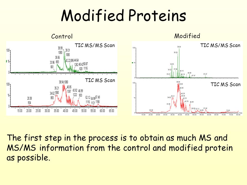 The first step in the process is to obtain as much MS and MS/MS information from the control and modified protein as possible.