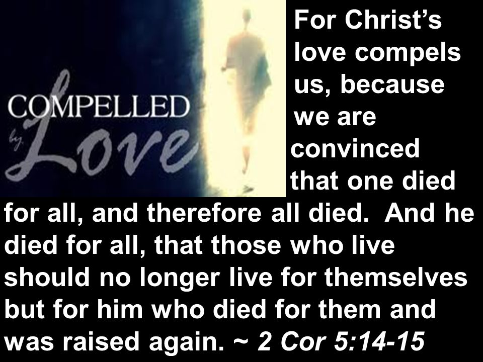 The next day John saw Jesus coming toward him and said, Behold, the Lamb of God, who takes away the sin of the world! John 1:29 For Christ's love compels us, because we are convinced that one died for all, and therefore all died.