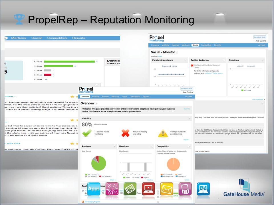 PropelRep – Reputation Monitoring