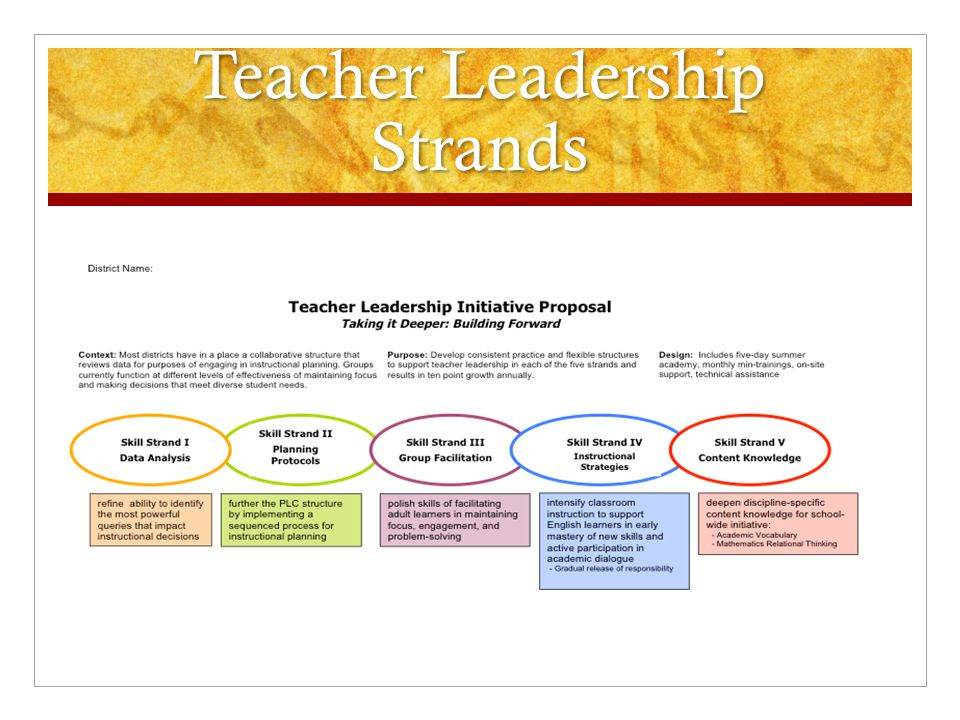 Teacher Leadership Strands