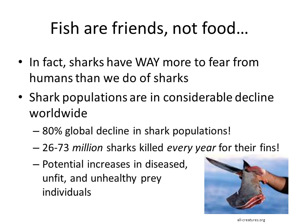 Fish are friends, not food… In fact, sharks have WAY more to fear from humans than we do of sharks Shark populations are in considerable decline world