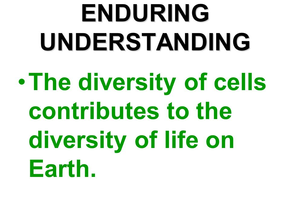 ENDURING UNDERSTANDING The diversity of cells contributes to the diversity of life on Earth.