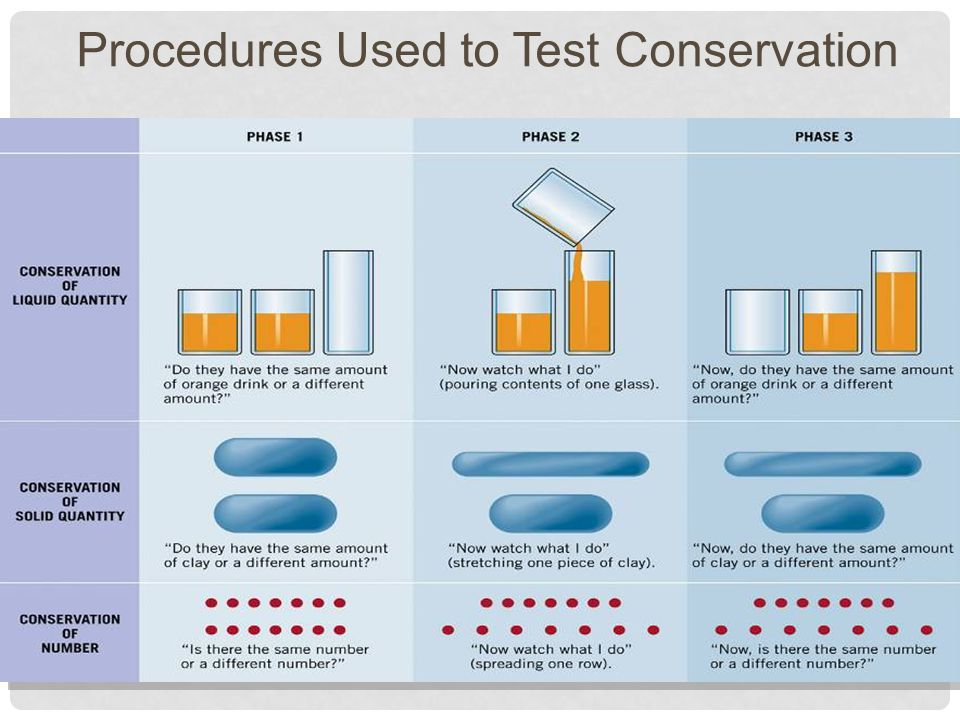 28 Procedures Used to Test Conservation