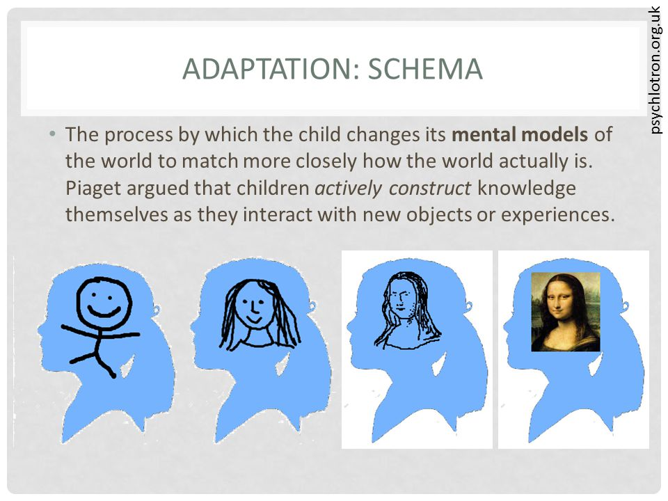 psychlotron.org.uk ADAPTATION: SCHEMA The process by which the child changes its mental models of the world to match more closely how the world actual