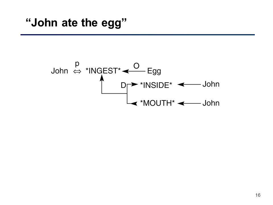 16 John ate the egg