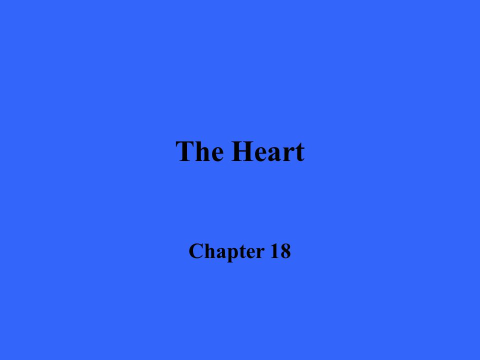 The Heart Chapter 18
