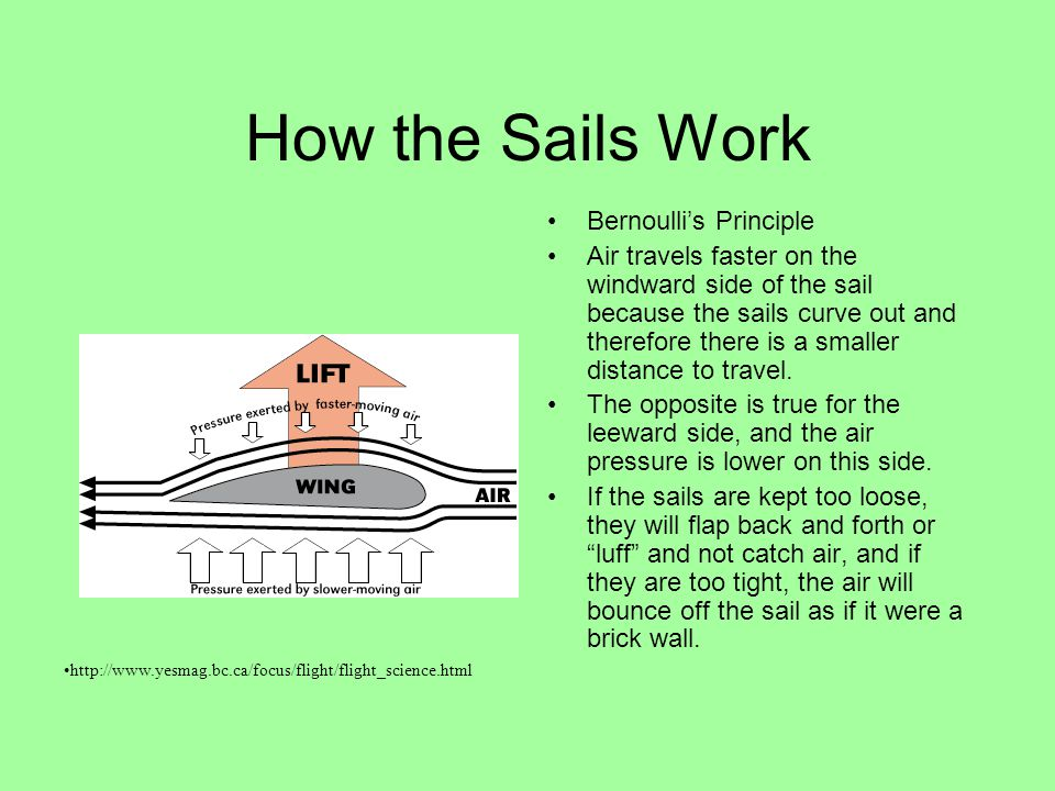 How the Sails Work Bernoulli's Principle Air travels faster on the windward side of the sail because the sails curve out and therefore there is a smaller distance to travel.