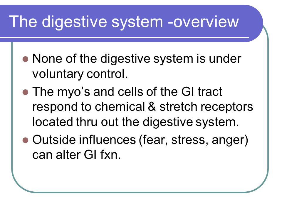 The digestive system -overview None of the digestive system is under voluntary control. The myo's and cells of the GI tract respond to chemical & stre