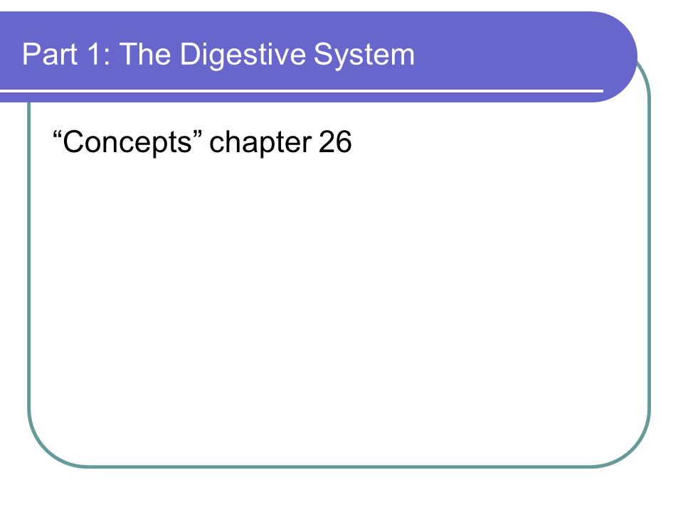 The digestive system Food enters the small intestines next.