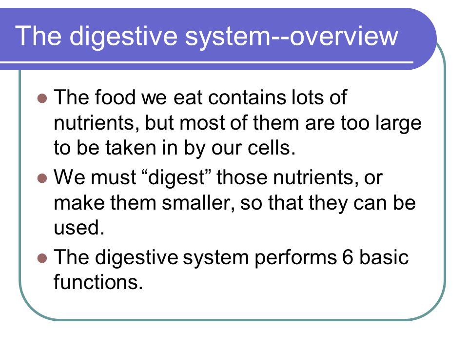 "The digestive system--overview The food we eat contains lots of nutrients, but most of them are too large to be taken in by our cells. We must ""digest"