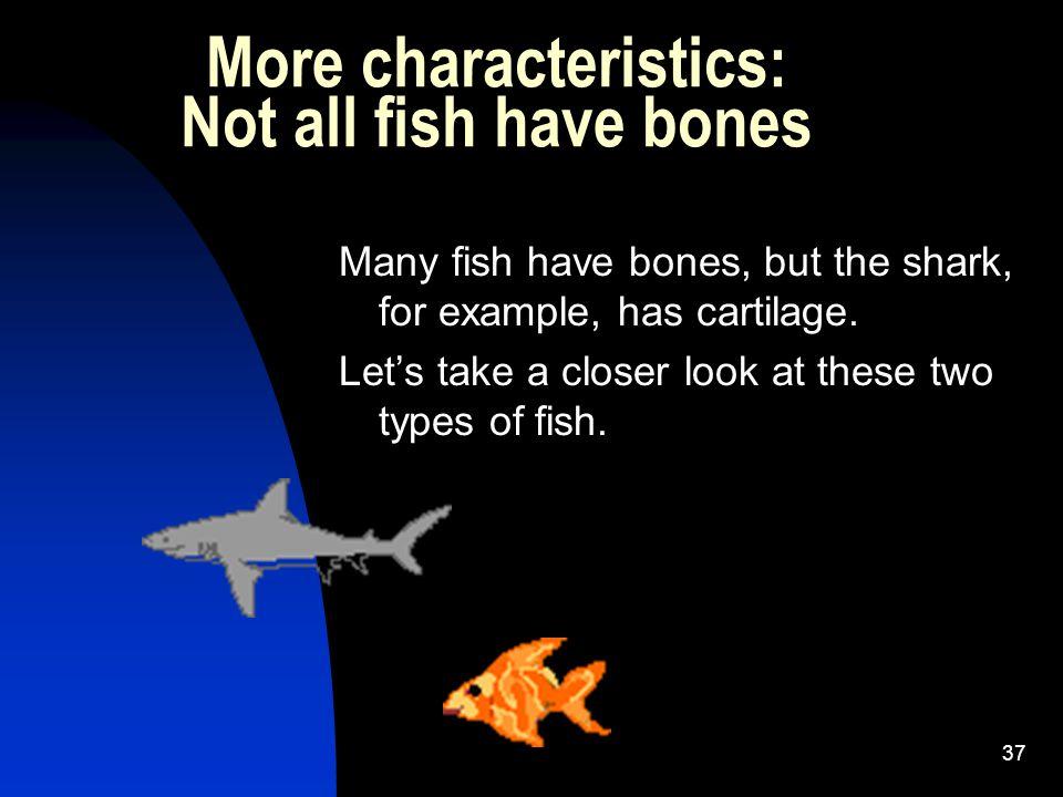 36 http://www.bizarbin.com/biggest- goldfish-ever-caught/