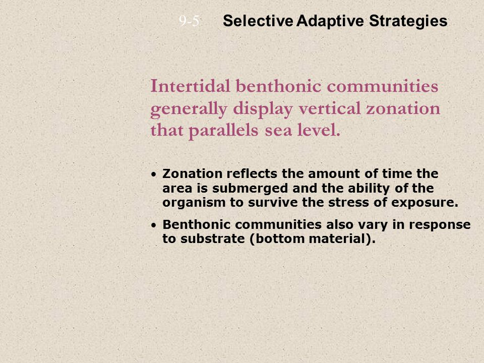 Intertidal benthonic communities generally display vertical zonation that parallels sea level.