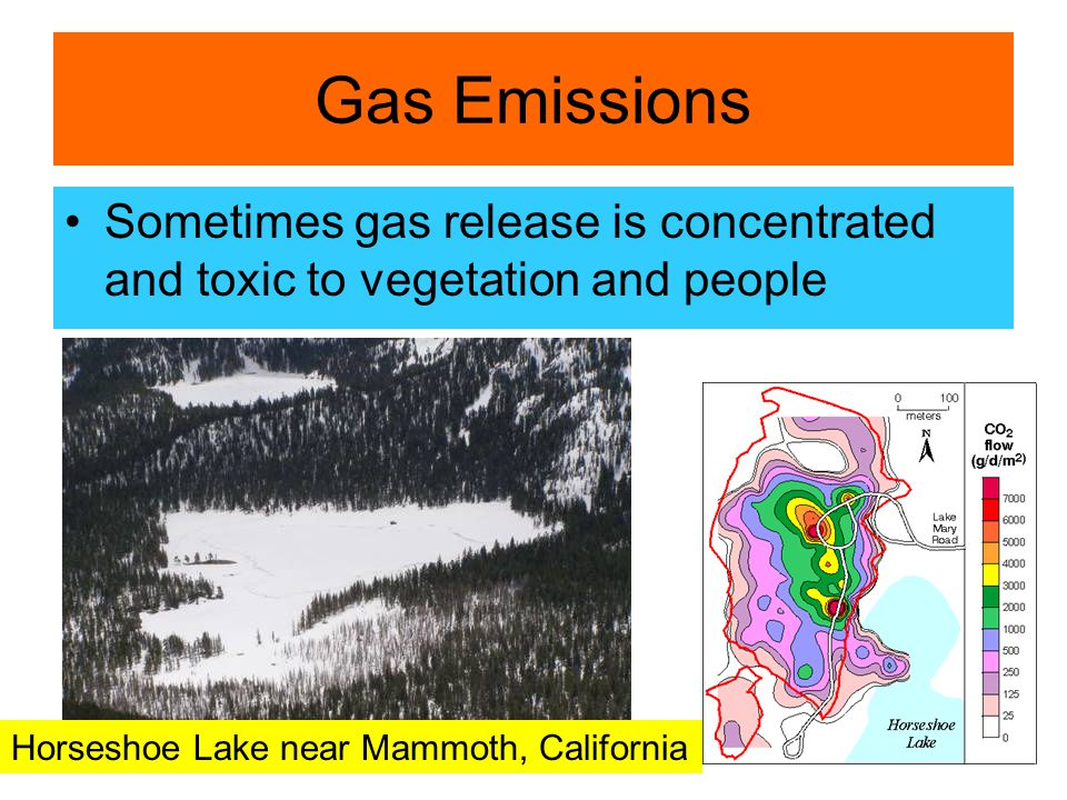 Gas Emissions Sometimes gas release is concentrated and toxic to vegetation and people Horseshoe Lake near Mammoth, California