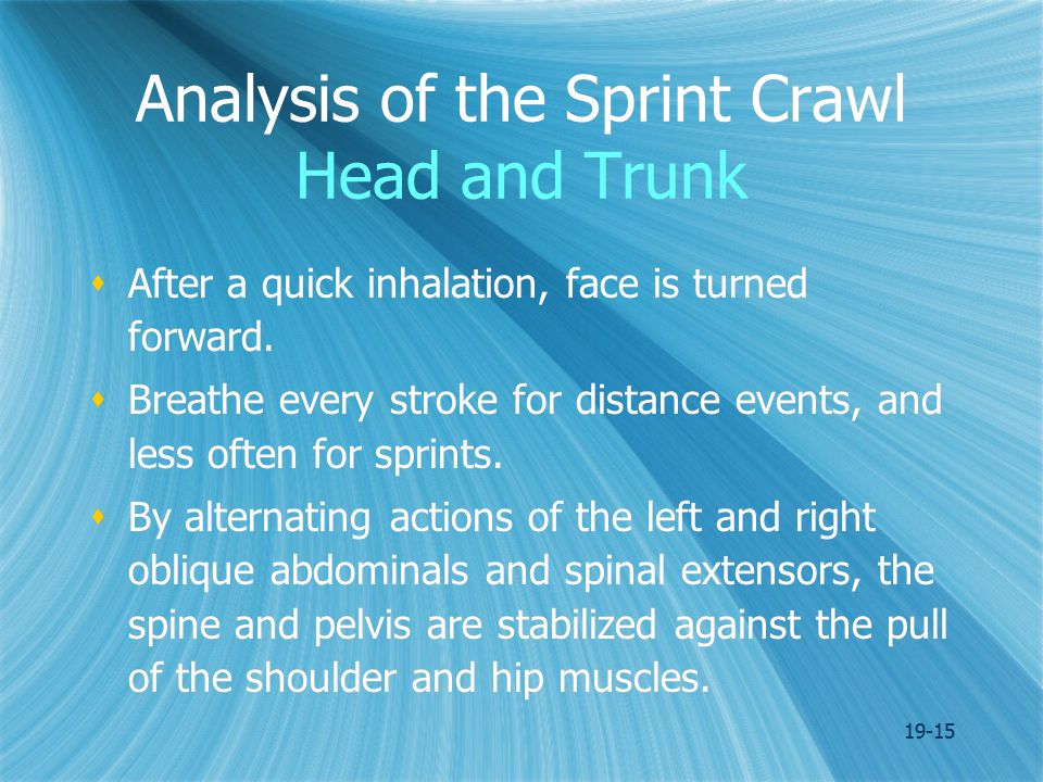 19-15 Analysis of the Sprint Crawl Head and Trunk  After a quick inhalation, face is turned forward.