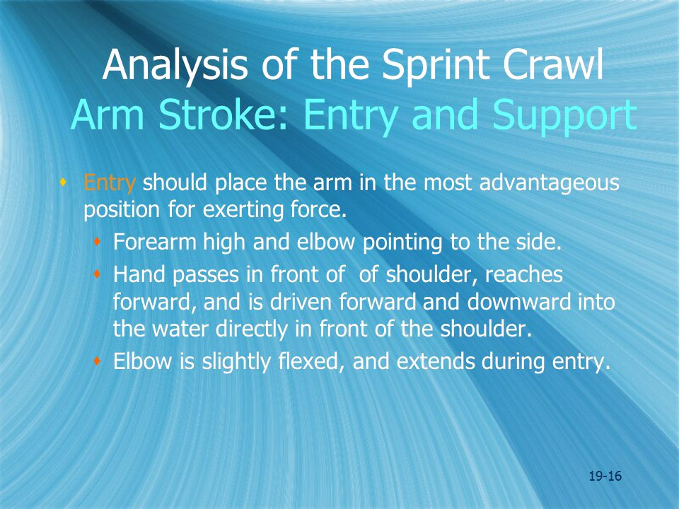 19-16 Analysis of the Sprint Crawl Arm Stroke: Entry and Support  Entry should place the arm in the most advantageous position for exerting force.