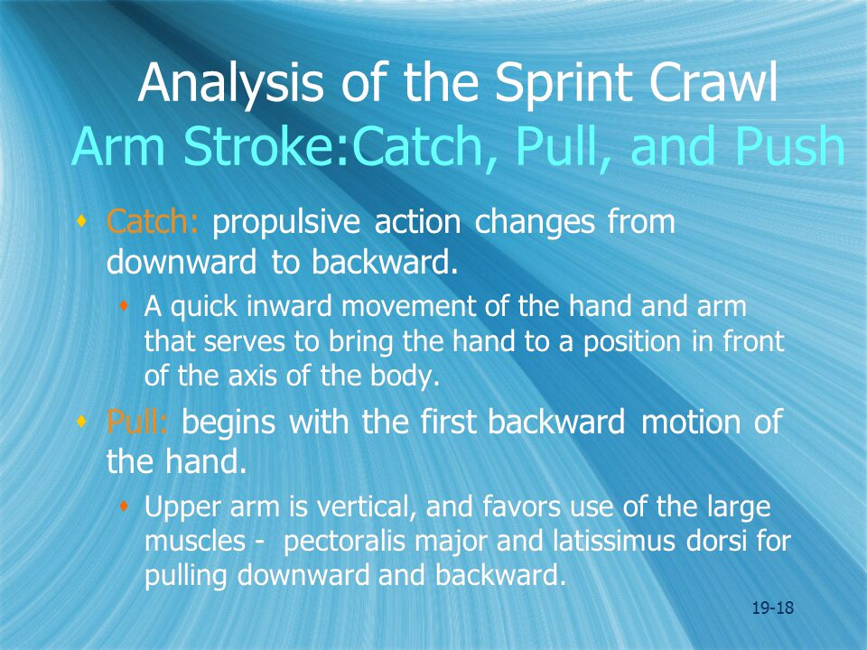 19-18 Analysis of the Sprint Crawl Arm Stroke:Catch, Pull, and Push  Catch: propulsive action changes from downward to backward.