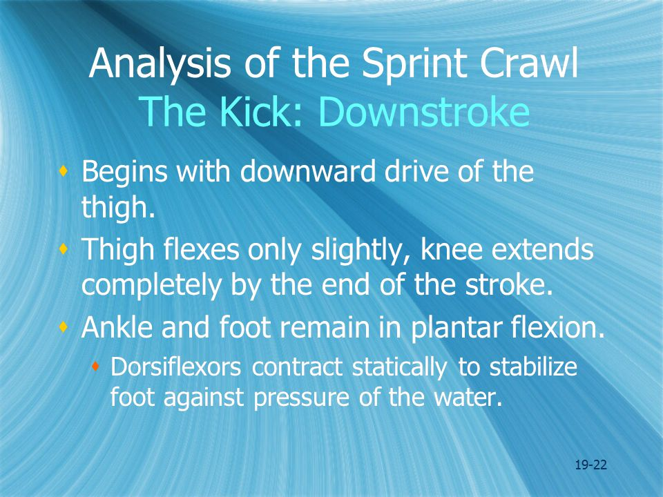 19-22 Analysis of the Sprint Crawl The Kick: Downstroke  Begins with downward drive of the thigh.