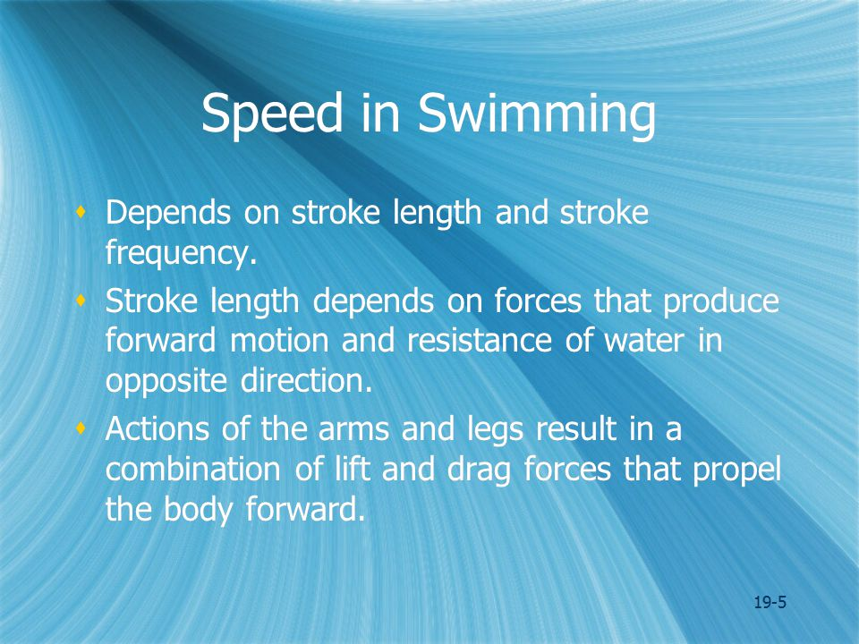 19-5 Speed in Swimming  Depends on stroke length and stroke frequency.