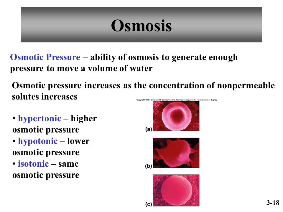 Osmosis Osmotic Pressure – ability of osmosis to generate enough pressure to move a volume of water Osmotic pressure increases as the concentration of