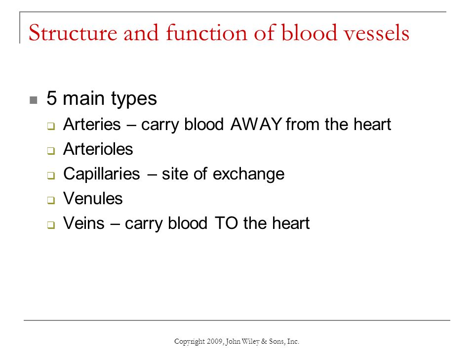Copyright 2009, John Wiley & Sons, Inc. Structure and function of blood vessels 5 main types  Arteries – carry blood AWAY from the heart  Arterioles