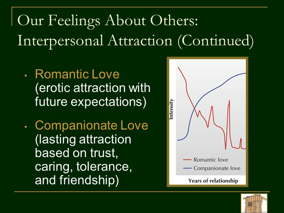 Our Feelings About Others: Interpersonal Attraction (Continued) Romantic Love (erotic attraction with future expectations) Companionate Love (lasting