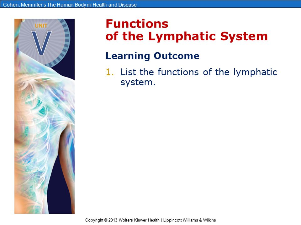 Copyright © 2013 Wolters Kluwer Health | Lippincott Williams & Wilkins Cohen: Memmler's The Human Body in Health and Disease Disorders of the Lymphatic System and Lymphoid Tissue Disorders Related to Infection ●Lymphadenopathy ●Lymphadenitis ●Infectious mononucleosis Lymphedema ●Elephantiasis