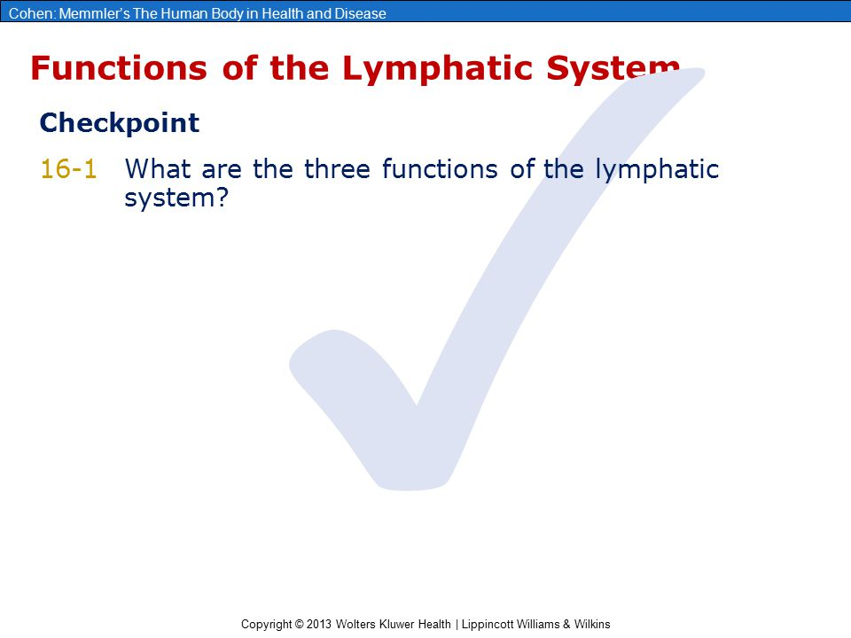 Copyright © 2013 Wolters Kluwer Health | Lippincott Williams & Wilkins Cohen: Memmler's The Human Body in Health and Disease Lymphatic Circulation Learning Outcomes 2.Explain how lymphatic capillaries differ from blood capillaries.