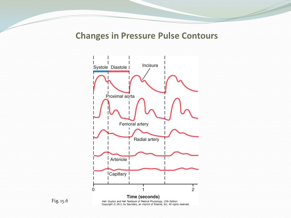 Changes in Pressure Pulse Contours Fig. 15.6