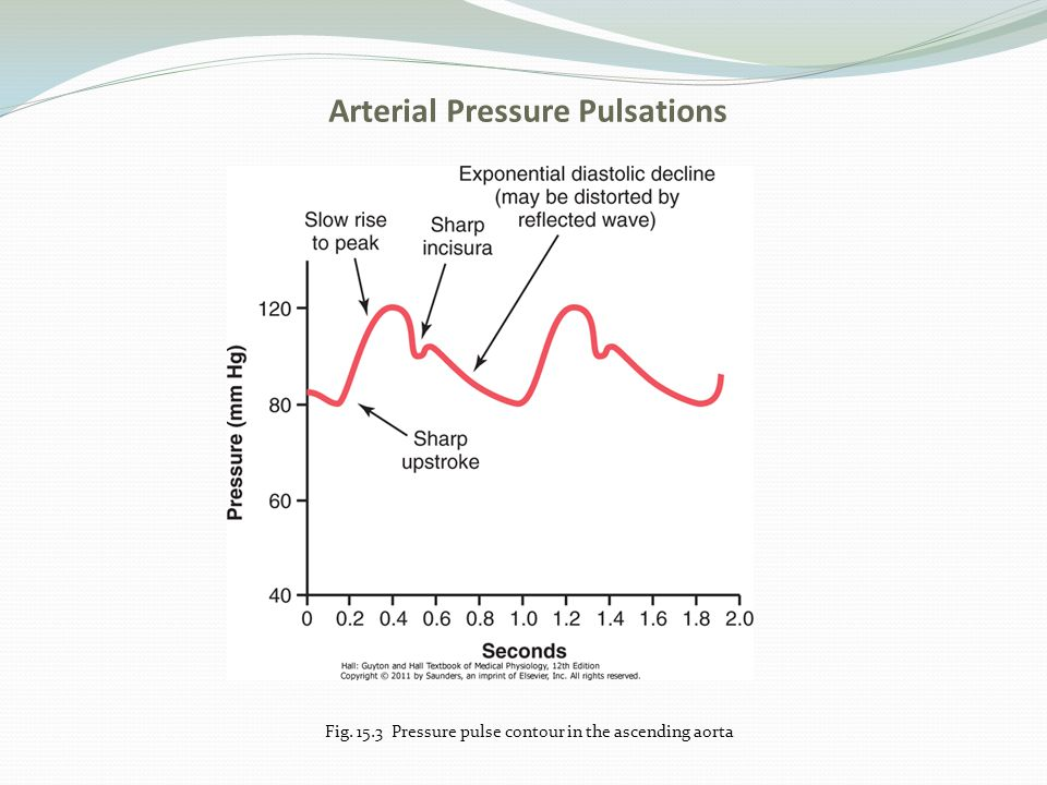 Arterial Pressure Pulsations Fig. 15.3 Pressure pulse contour in the ascending aorta