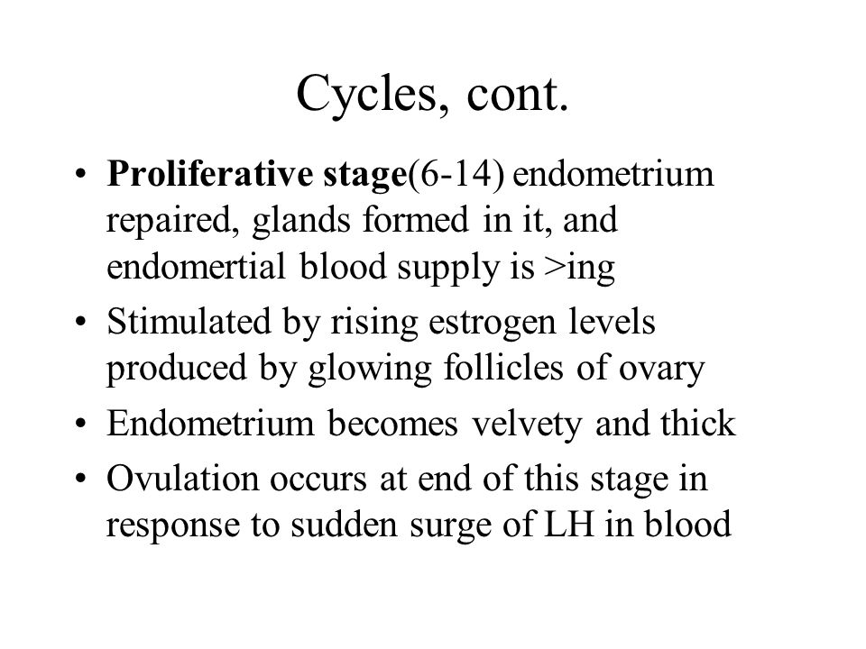 Cycles, cont.