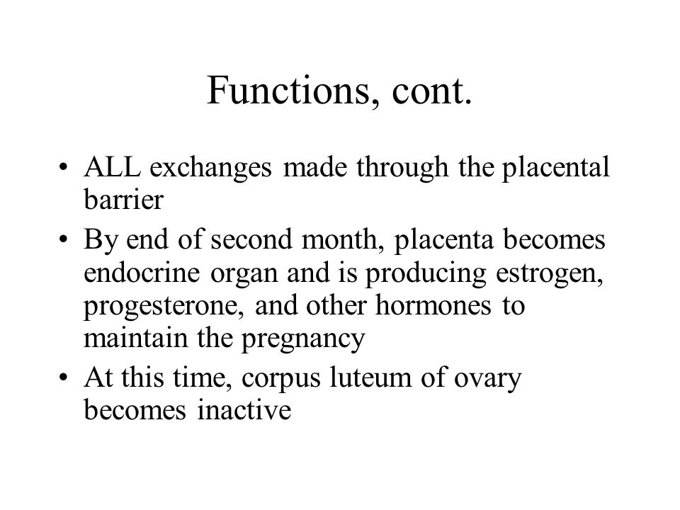 Functions, cont.